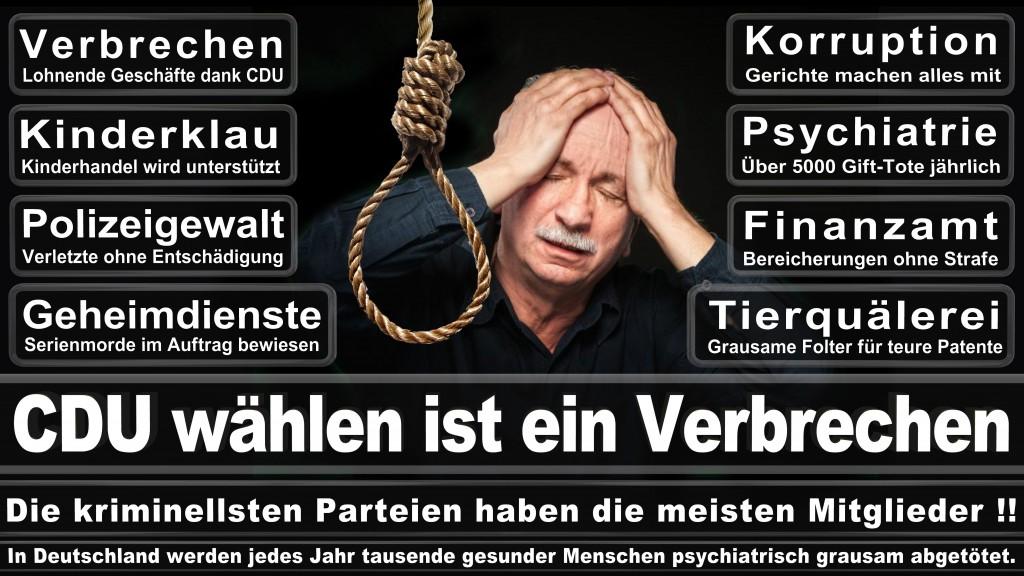 Angela-Merkel (534)