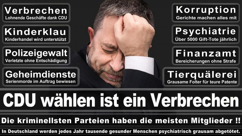 Angela-Merkel (541)